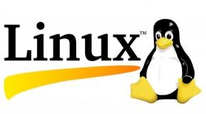 linux-logo1
